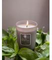 Basil Mandarin Scented Candle