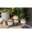 The Outdoor Edit - Citronella Candle (5 PACK)