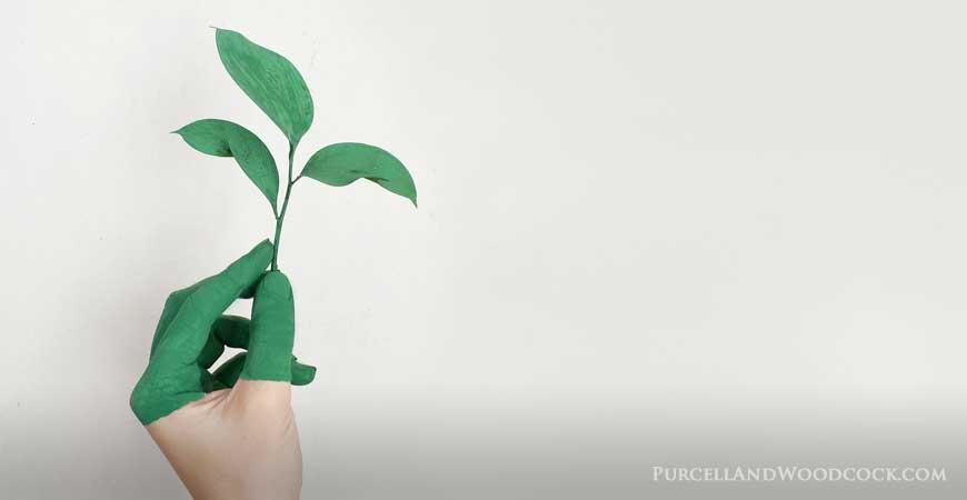 Green Fingered