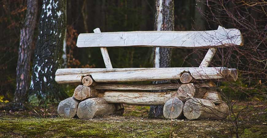 Natural Log Bench